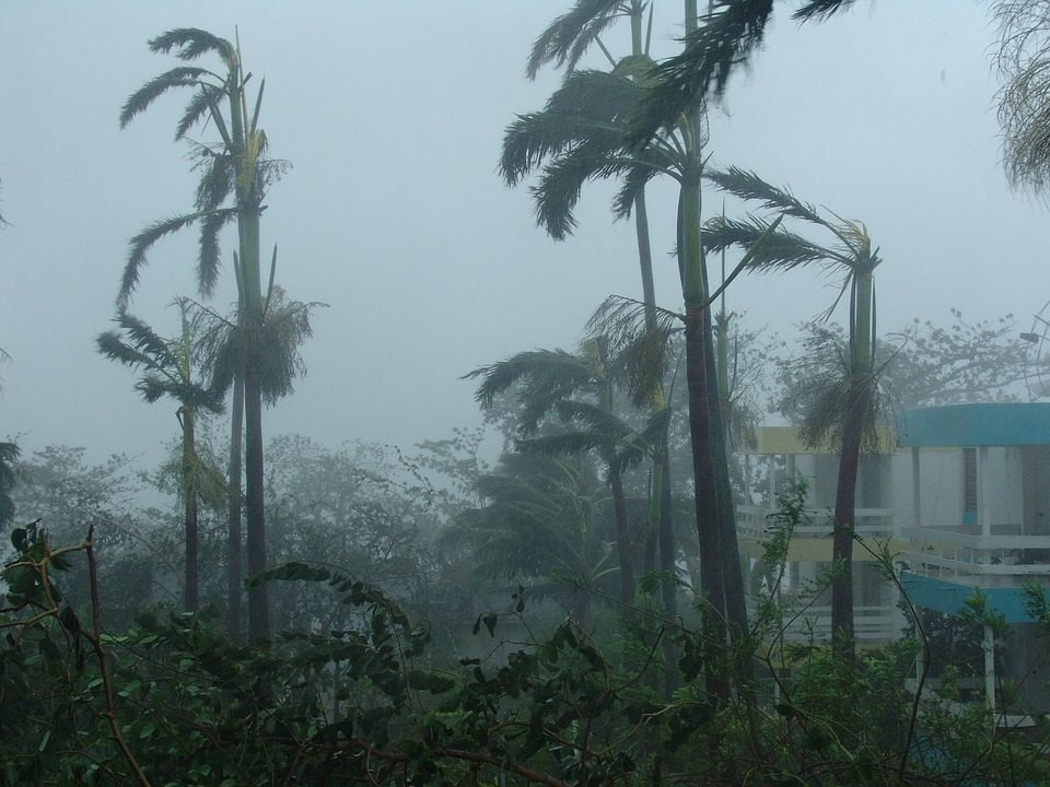Webinar Recap: Preparing for Hurricanes and Natural Disasters Amid COVID-19