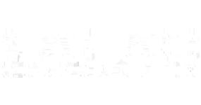 seaboard corporation logo white