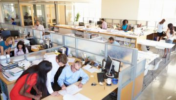 office with employees at work in cubicles