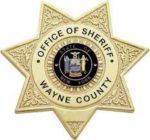 wayne county sheriff badge